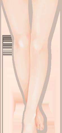황금비율 다리
